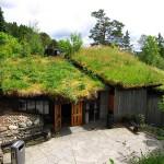ノルウェーの芝屋根